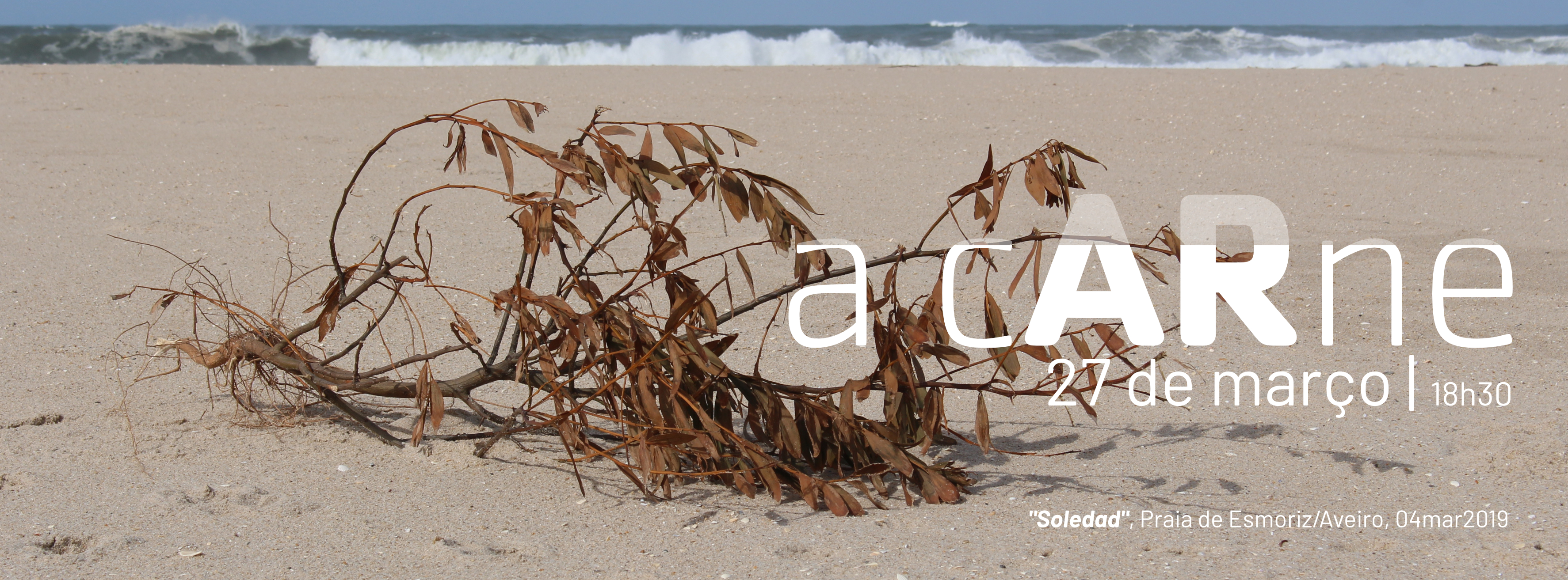 901_galeria_a-a-carne_banner