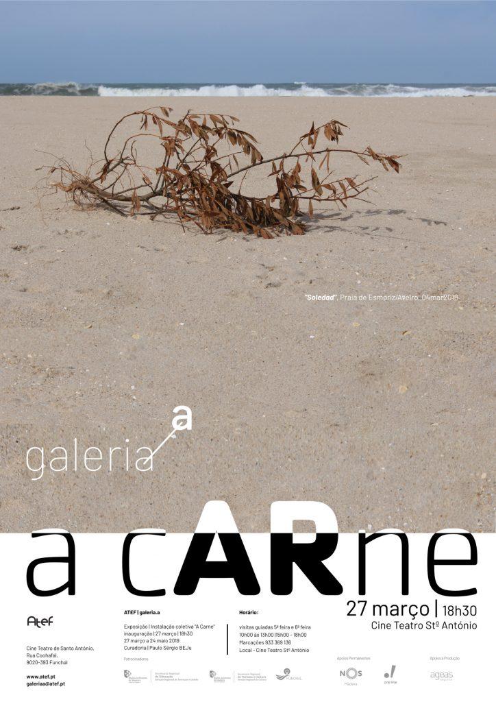 901_galeria_a-a-carne_flyer_01