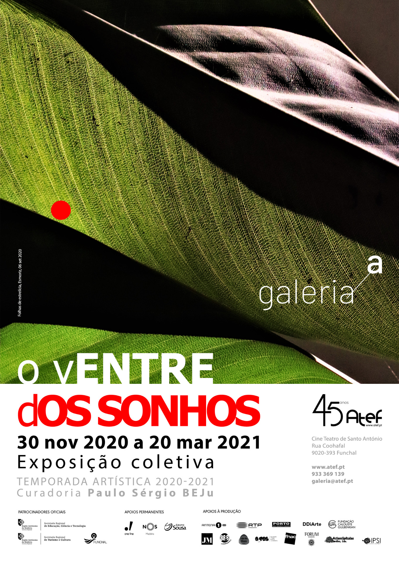 ga-cartaz-30nov2020